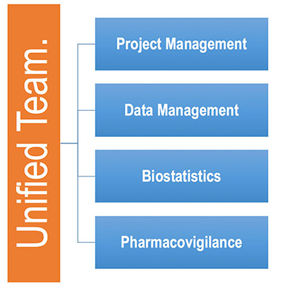 Unified Team Project Management Data Management Biostatistics Pharmacovigilance