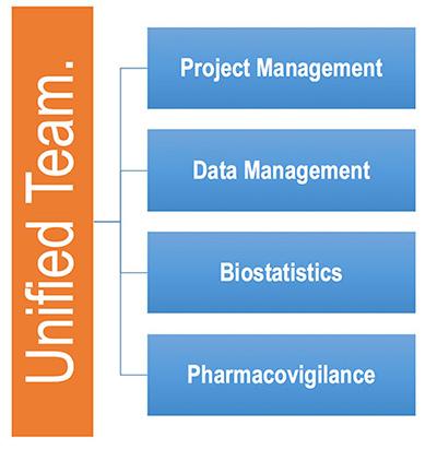 Unified Team Project Management Data Management Biostatistics Pharmacovigilance