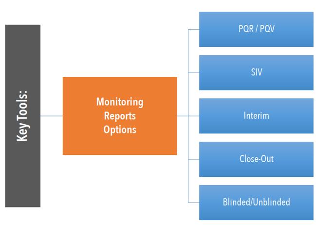 Monitor Visit Report Options